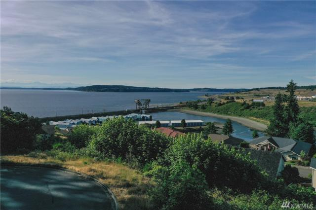0 Chambers Bay Ct, Steilacoom, WA 98388 (#1473884) :: Better Properties Lacey