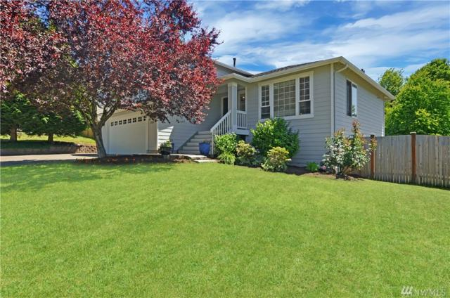 27503 NE 141st Place, Duvall, WA 98019 (#1474103) :: Platinum Real Estate Partners