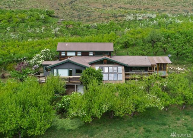 53 Raven Ridge Rd, Twisp, WA 98856 (#1474169) :: Better Properties Lacey