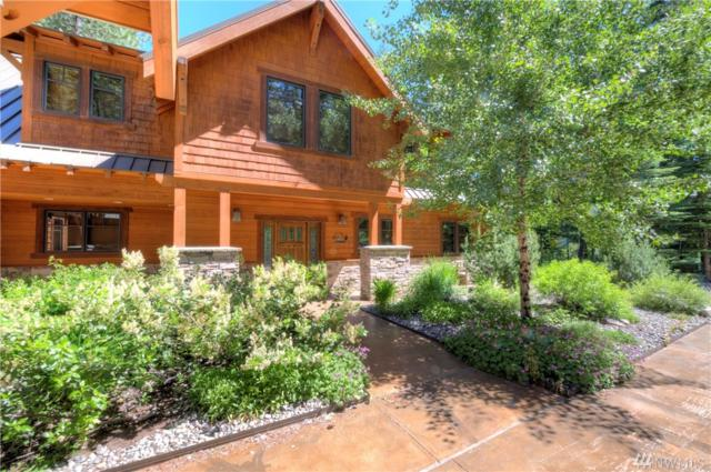 22 Wilson Ranch Rd, Mazama, WA 98833 (#1474642) :: Ben Kinney Real Estate Team