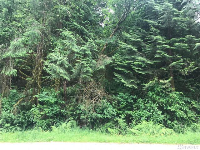 23 Louise View Dr, Bellingham, WA 98229 (#1474740) :: Ben Kinney Real Estate Team