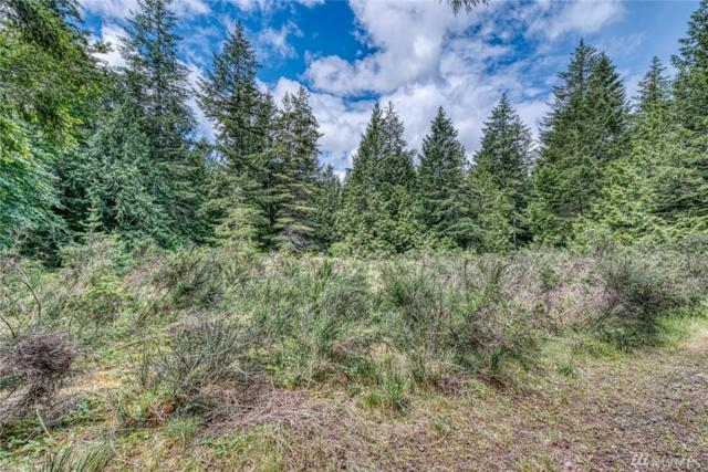 0-Lot 6 Larson Lane NW, Seabeck, WA 98380 (#1474787) :: Record Real Estate