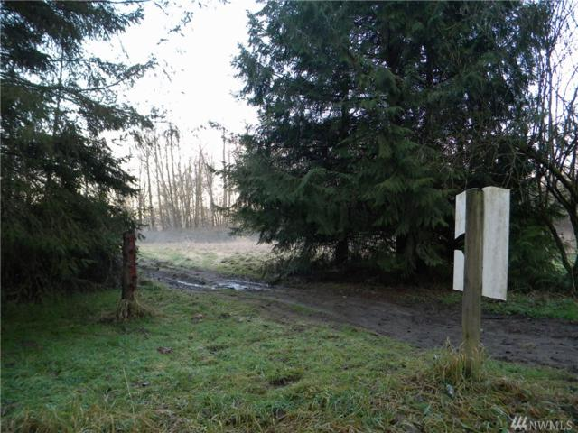 23015 60th Dr NW, Stanwood, WA 98292 (#1474943) :: Capstone Ventures Inc