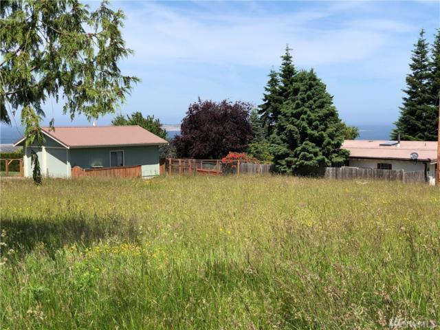 190 Hemlock Dr, Port Townsend, WA 98368 (#1475040) :: Kimberly Gartland Group