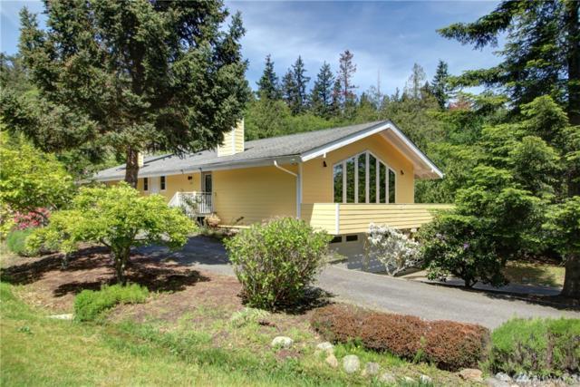 619 Nehalem Lane, La Conner, WA 98257 (#1475105) :: Better Properties Lacey