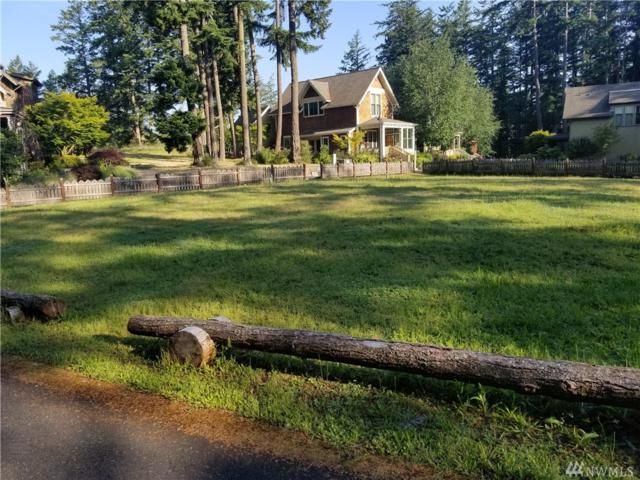 31 Cobblestone Rd, Friday Harbor, WA 98250 (#1475370) :: Lucas Pinto Real Estate Group