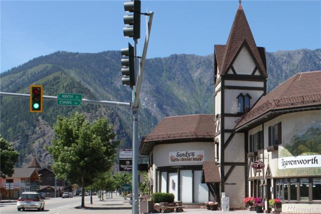 894 Us Hwy 2 Ste C, Leavenworth, WA 98826 (#1475566) :: Ben Kinney Real Estate Team