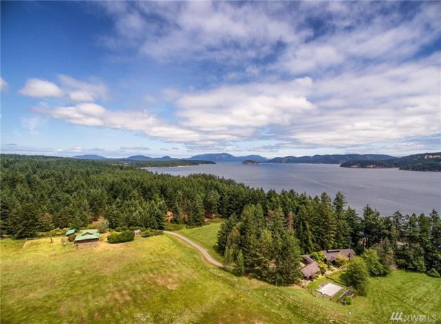 2787 Lopez Sound Rd, Lopez Island, WA 98261 (#1475602) :: Platinum Real Estate Partners