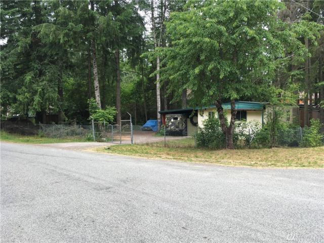 8344 Golden Valley Blvd, Maple Falls, WA 98266 (#1475669) :: Northern Key Team