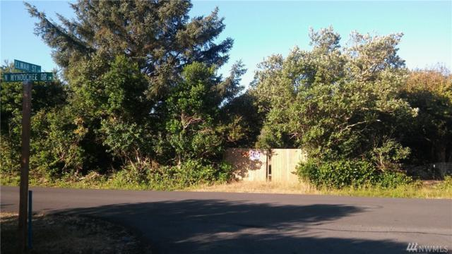 237 N Wynoochee Dr SW, Ocean Shores, WA 98569 (#1475743) :: NW Home Experts