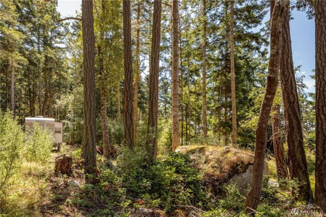 291 Tennis Ave, Lopez Island, WA 98261 (#1475757) :: Platinum Real Estate Partners