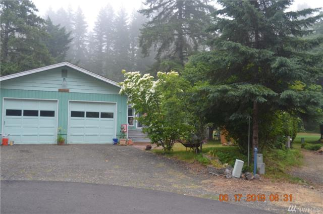 100 N Mt Noyes Place, Hoodsport, WA 98548 (#1475839) :: The Deol Group