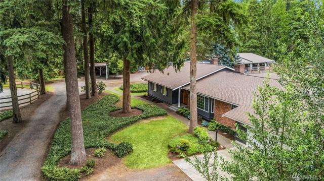 15206 206th Ave NE, Woodinville, WA 98077 (#1476038) :: Keller Williams Realty Greater Seattle