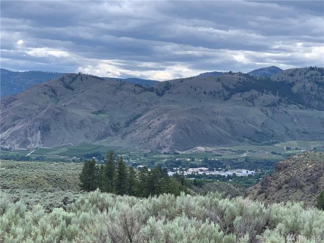0-TBD Longhorn Dr, Oroville, WA 98844 (#1476252) :: Kwasi Homes