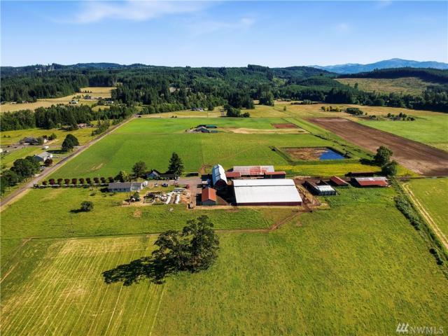 439 Spooner Rd, Chehalis, WA 98532 (#1476346) :: Lucas Pinto Real Estate Group