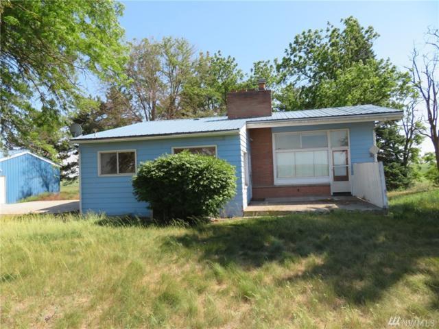 34518 E Mohler Rd, Harrington, WA 99134 (#1476363) :: Kimberly Gartland Group