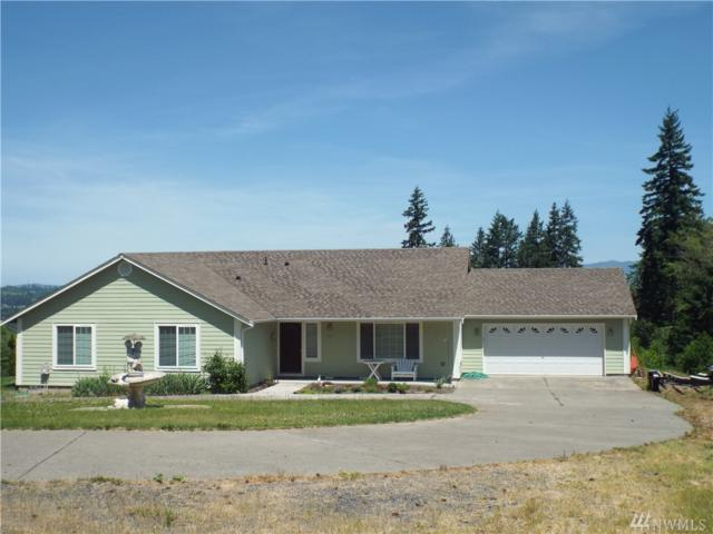 201 Tanglewood Dr, Mossyrock, WA 98564 (#1476517) :: Better Properties Lacey