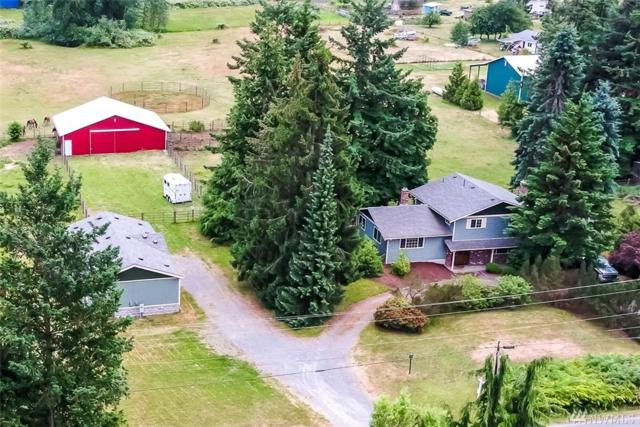 7010 Dahlberg Rd, Ferndale, WA 98248 (#1476531) :: Platinum Real Estate Partners