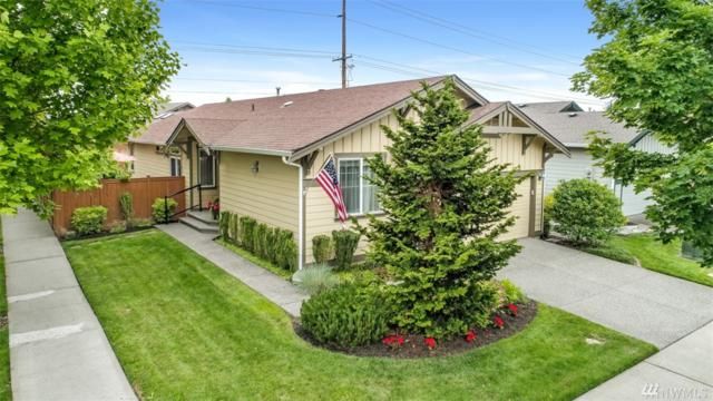 8029 Mercer Ct NE, Lacey, WA 98516 (#1476650) :: Ben Kinney Real Estate Team