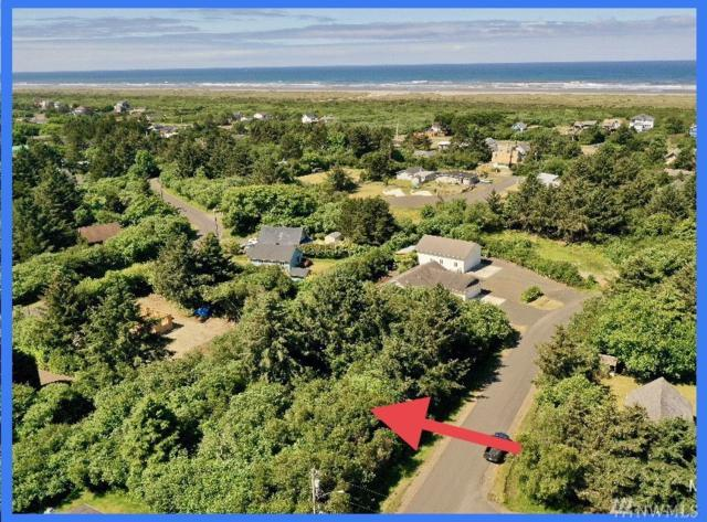123 Gull St, Ocean Shores, WA 98569 (#1476766) :: McAuley Homes