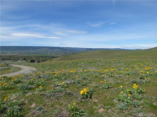 14 Ellensburg Ranches Rd, Ellensburg, WA 98926 (#1477179) :: Capstone Ventures Inc