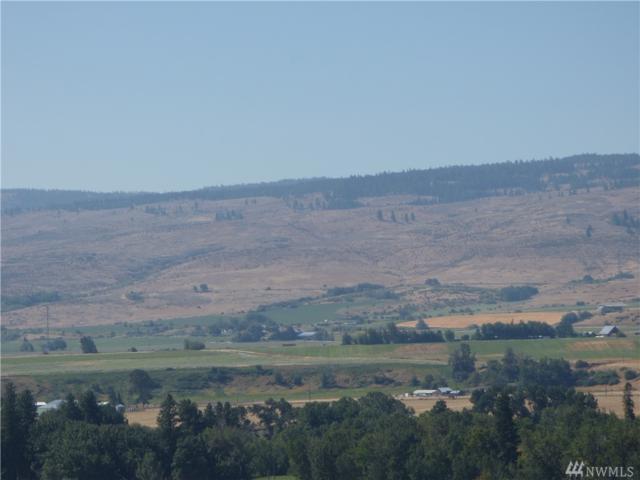 15 Ellensburg Ranches, Ellensburg, WA 98926 (#1477181) :: Center Point Realty LLC