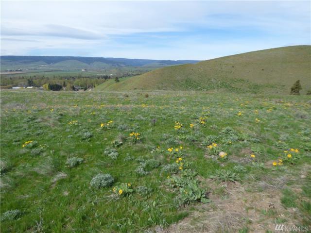 7 Ellensburg Ranch, Ellensburg, WA 98926 (#1477183) :: Center Point Realty LLC