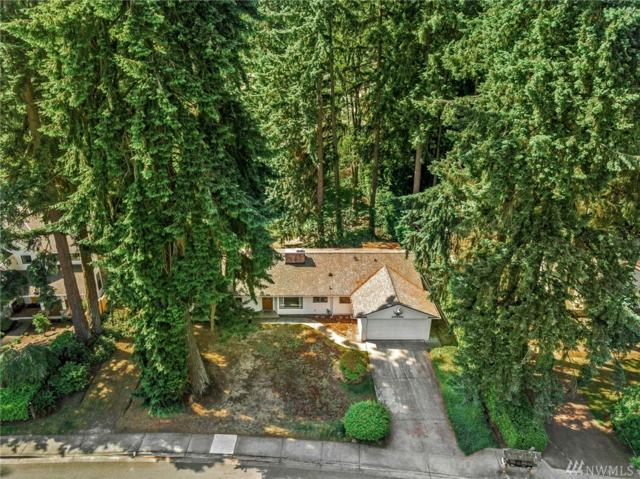 10461 SE 23rd St, Bellevue, WA 98004 (#1477201) :: Chris Cross Real Estate Group
