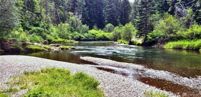 0-Lot 21 Kiias Elk Trail, Cle Elum, WA 98922 (#1477335) :: Center Point Realty LLC