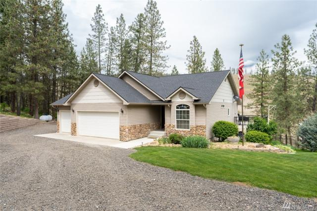 47861 E Riverview Lane, Reardan, WA 99013 (#1477609) :: Chris Cross Real Estate Group