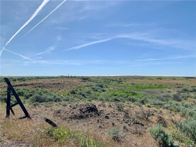 0 Tbd Wilbur Airport Lot 2 Rd, Wilbur, WA 99185 (#1477640) :: Crutcher Dennis - My Puget Sound Homes