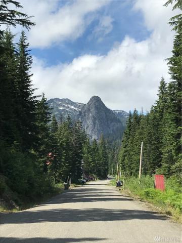 1-XX Yellowstone Rd, Snoqualmie Pass, WA 98068 (#1477695) :: Ben Kinney Real Estate Team