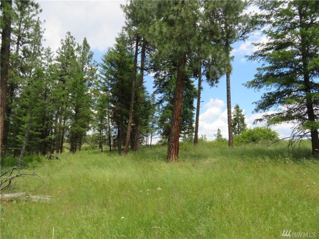 0-TBD W Curlew Lake Rd, Republic, WA 99166 (#1477832) :: Ben Kinney Real Estate Team