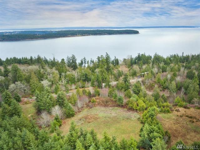 2380 Oak Bay Road, Port Hadlock, WA 98339 (#1477874) :: Ben Kinney Real Estate Team