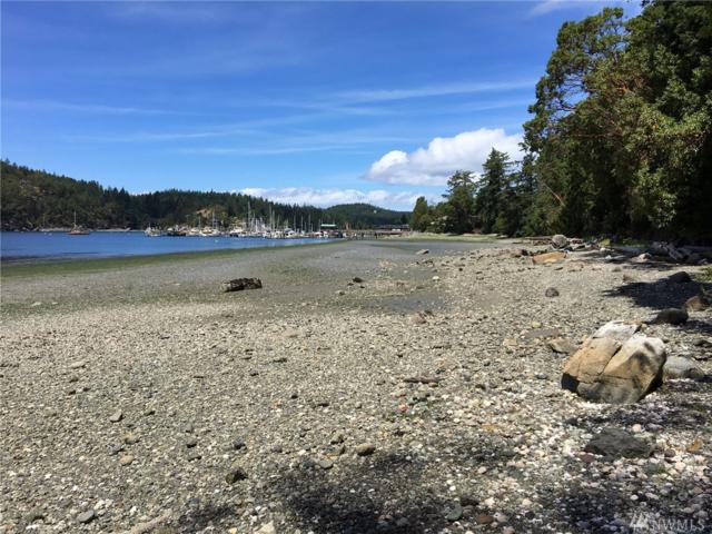 5550 Deer Harbor Rd, Orcas Island, WA 98245 (#1477886) :: Better Properties Lacey