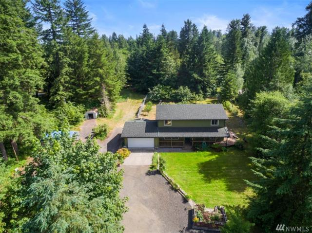 3325 104th Ave SW, Tumwater, WA 98512 (#1478071) :: Platinum Real Estate Partners