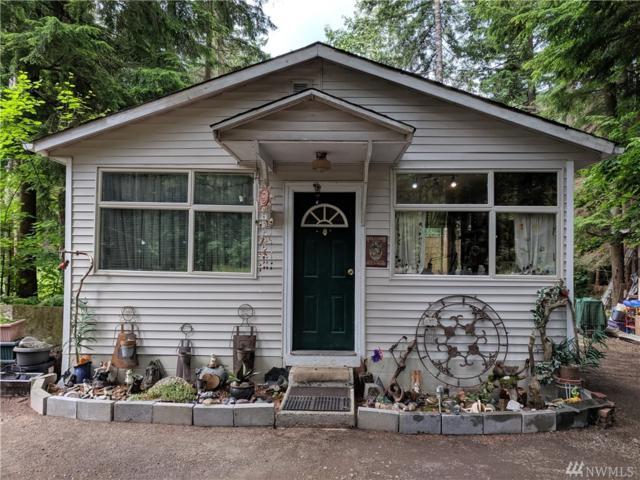 6175 Silver Spruce Wy, Maple Falls, WA 98266 (#1478241) :: Costello Team