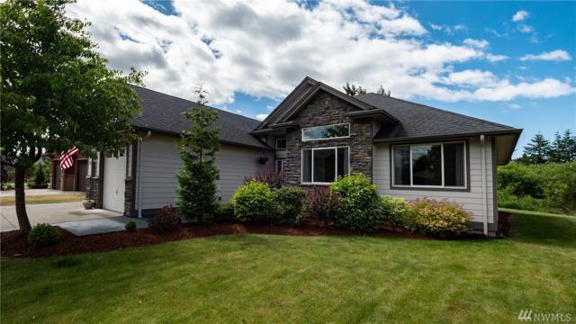 4411 Castlerock Dr, Blaine, WA 98230 (#1478361) :: Platinum Real Estate Partners