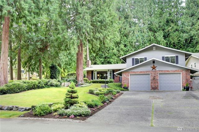 19302 5th Dr SE, Bothell, WA 98012 (#1478395) :: Platinum Real Estate Partners