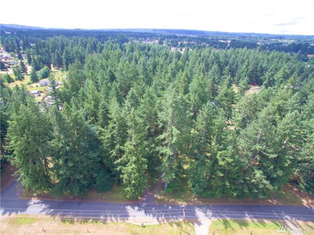 0-X 173rd Ave SW, Rochester, WA 98579 (#1478419) :: Platinum Real Estate Partners