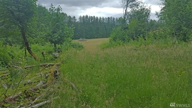 0-0 Young Rd, Mossyrock, WA 98564 (#1478628) :: Better Properties Lacey
