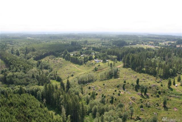 0-000 Mountain Sun Rd, Chehalis, WA 98532 (#1478705) :: Better Properties Lacey