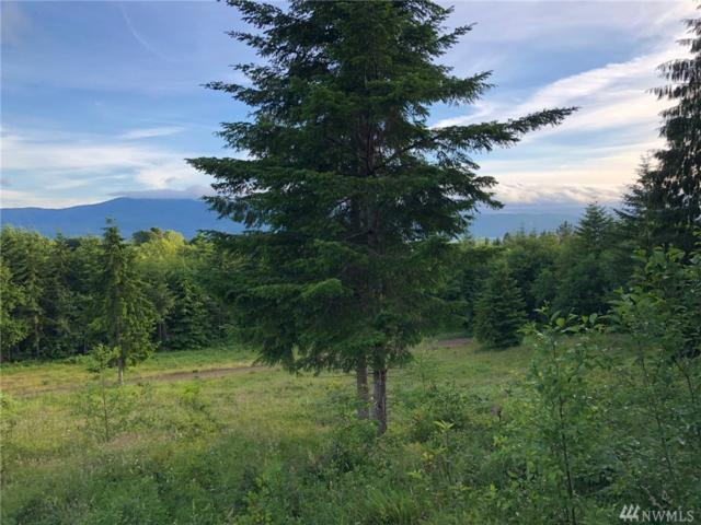 0 Lot 3 Skyline Rd, Cathlamet, WA 98612 (#1479186) :: Platinum Real Estate Partners
