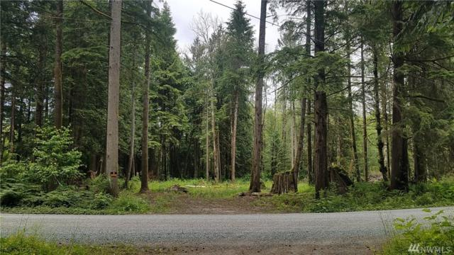 0-NHN Silver Creek Dr, Sedro Woolley, WA 98284 (#1479187) :: Keller Williams Western Realty