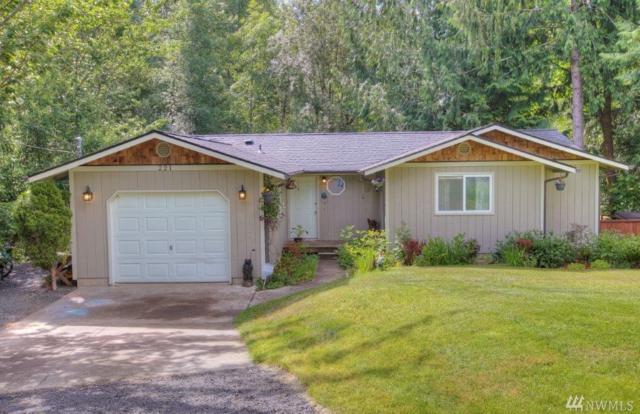 221 E Stavis Rd, Shelton, WA 98584 (#1479312) :: Platinum Real Estate Partners