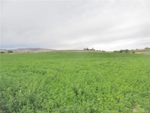 0-NNA E Pomona Rd, Yakima, WA 98901 (#1479417) :: Platinum Real Estate Partners