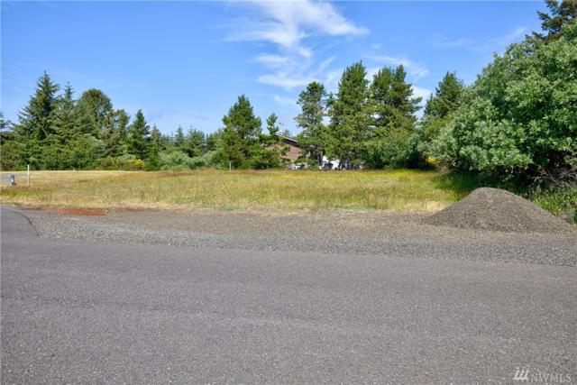 942 Exact Ct SE, Ocean Shores, WA 98569 (#1480165) :: Pickett Street Properties