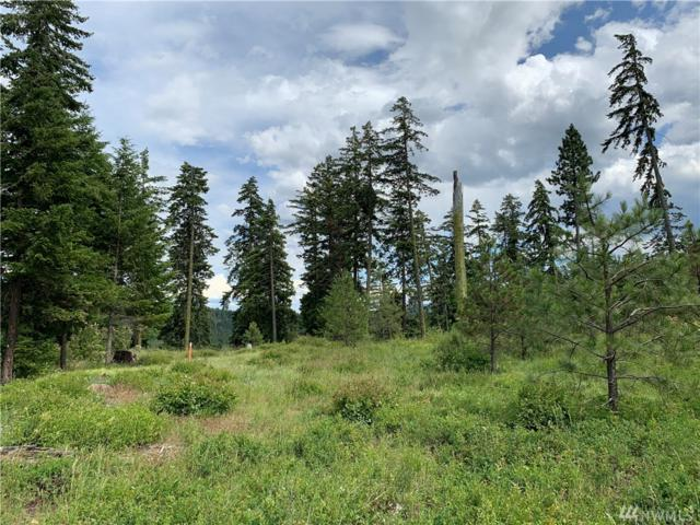 261 Morning Star Lane, Cle Elum, WA 98922 (#1480363) :: NW Home Experts