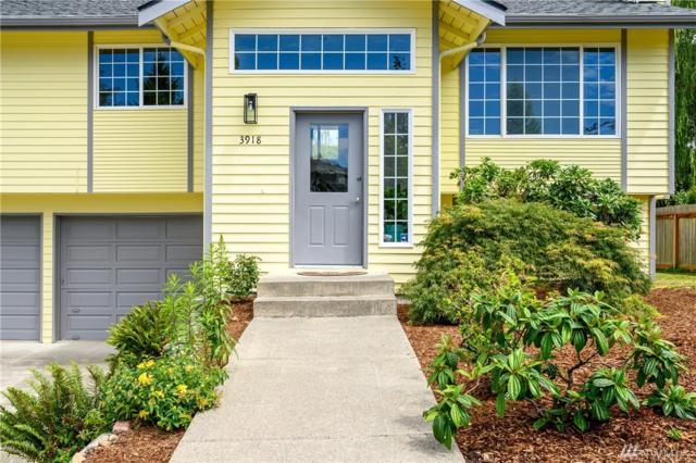 3918 Tamarack Rd, Bellingham, WA 98266 (#1480376) :: Crutcher Dennis - My Puget Sound Homes