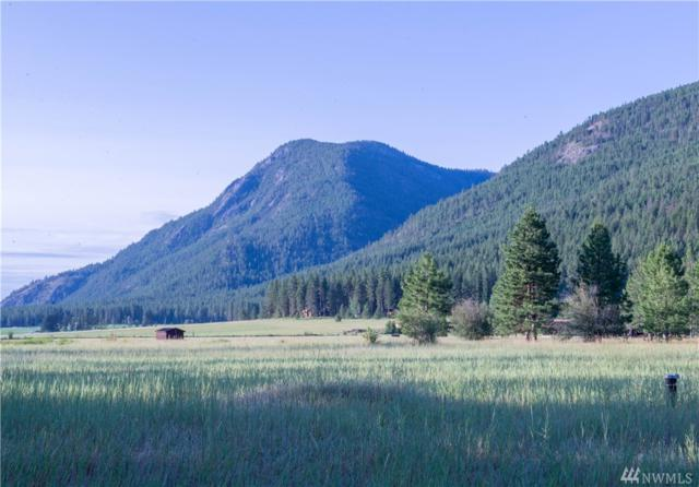 18014 Highway 20, Mazama, WA 98833 (#1480558) :: Ben Kinney Real Estate Team